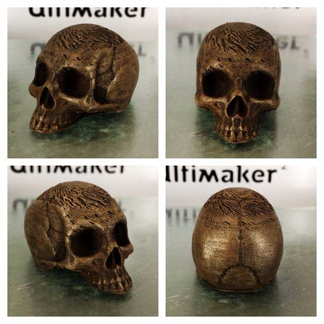 Skull: Made With Bronzfill